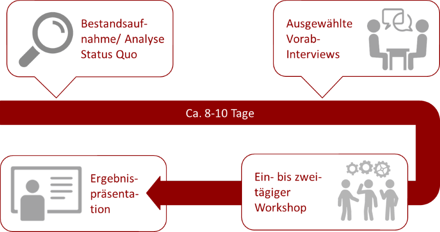 Vorgehen Diagnostik-Workshop